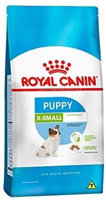 X - Small Puppy